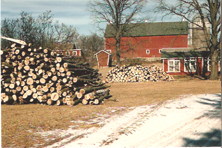 Firewood ready for winter, red barn in the background