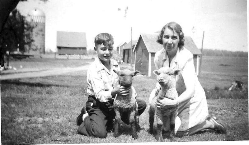 Lambs_1940s